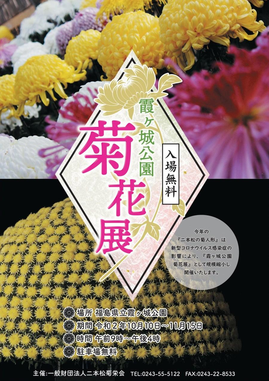 菊花展チラシ