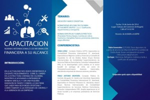 Normas Internacionales de Información Financiera a su Alcance