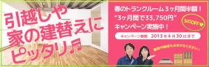 2013-campaign-haru-page