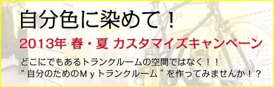 2013-campaign-カスタマイズキャンペーン-cyc