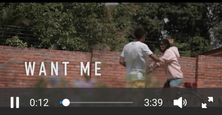 OV Want Me ft. Stonebwoy (Official Video)
