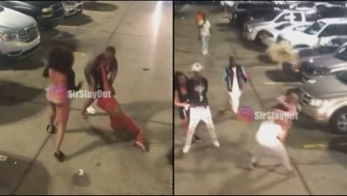 Photo of Slay Queens Exchange Blows On The Street |VIDEO|