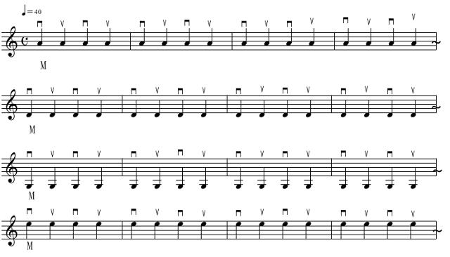 解放弦の基本練習