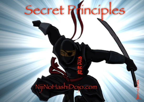 Niji No Hashi-Dojo-Martial Arts-Cary-Morrisville-North Carolina-Ninja-Secret-Principles 2