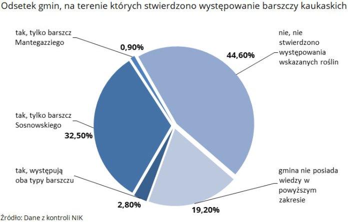Odsetek gmin, na terenie których stwierdzono występowanie barszczy kaukaskich. Źródło: Dane z kontroli NIK