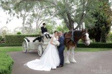 Wedding Photographer Canberra {Nikki Blades Photography}