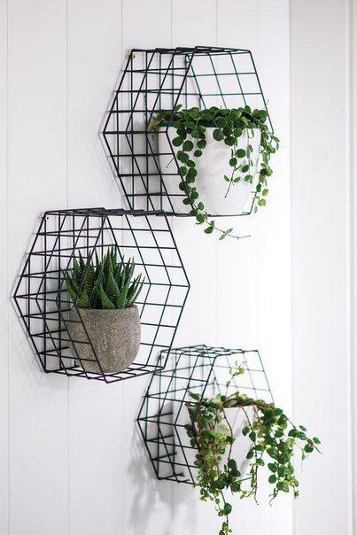 Green Plants Decor