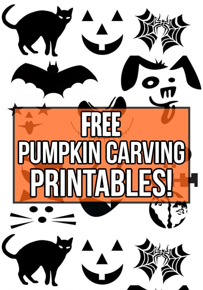 image about Pumpkin Printable Templates titled Cost-free Printable Pumpkin Carving Routines - Nikkis Plate