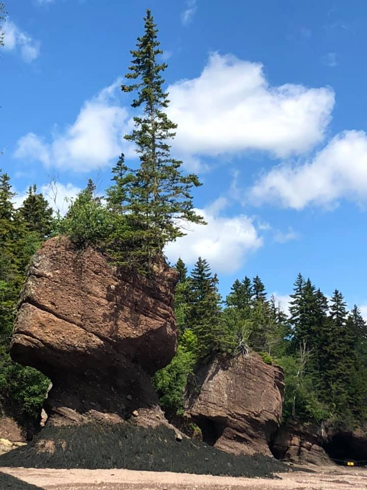 Camping at Bay of Fundy National Park in New Brunswick is a must-do item if you're looking for enjoyable things to do in new brunswick!