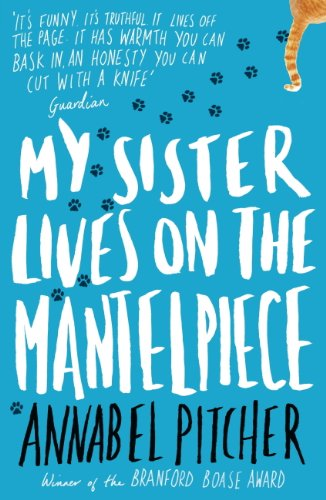 My Sister Lives on the Mantelpiece, book review - Nikki Young