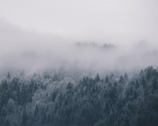 Landschaftsfotografie-Winter-Aachen-Deutschland-Alpen- (3)