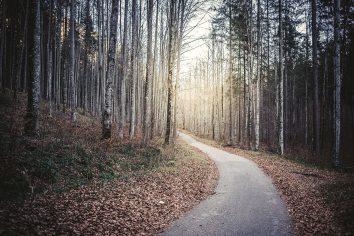 schwangau-germany-photography-landscape-niklas-coen