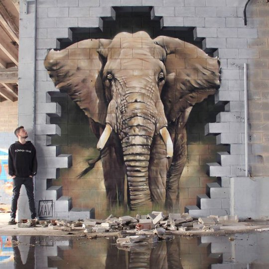 STREET ART, GRAFFITTI, ΓΚΡΑΦΙΤΙ, Η ΤΕΧΝΗ ΤΟΥ ΔΡΟΜΟΥ, ΕΛΑΪΣ, ΤΟ BLOG ΤΟΥ ΝΙΚΟΥ ΜΟΥΡΑΤΙΔΗ, nikosonline.gr