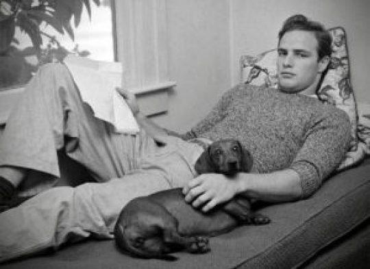 Marlon Brando, Μάρλον Μπράντο