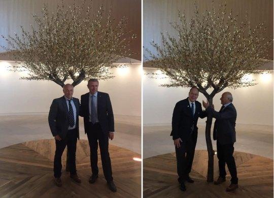 Έλληνας γλύπτης στο νέο κτίριο της ΔΟΕ, Άγγελος Παναγιωτίδης, Aggelos Panayiotidis, Olympic House, olive tree, nikosonline.gr