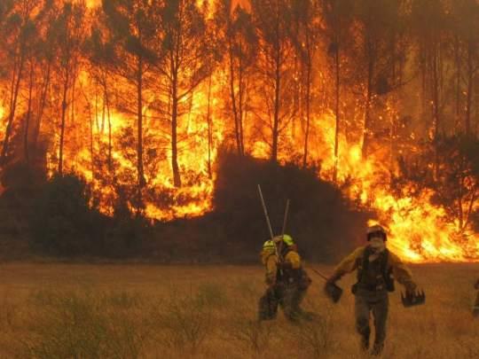 Η ταυτότητα της ημέρας, Πάρνηθα, Parnitha Fire, ΤΟ BLOG ΤΟΥ ΝΙΚΟΥ ΜΟΥΡΑΤΙΔΗ, nikosonline.gr