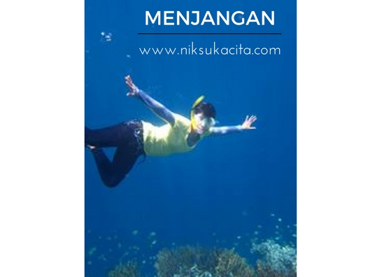 Bawah lautnya Menjangan - Indonesia