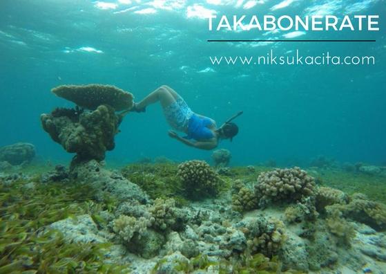 Bawah lautnya Takabonerate - Indonesia