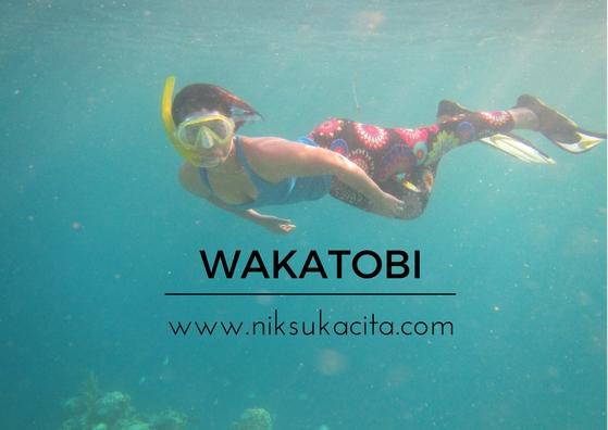 bawah lautnya Wakatobi - Indonesia