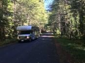 Durch den Gifford Pinchot National Forest