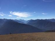 Die Berge des Olympic NP vom Hurricane Ridge