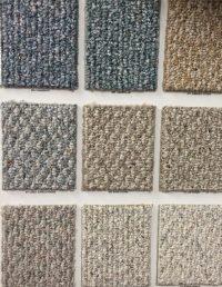 berber carpet cats