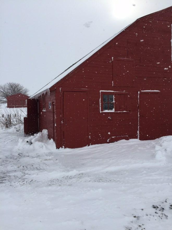 Barn winter blizzard