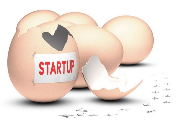 Five startups from Y Combinator that should be on your radar