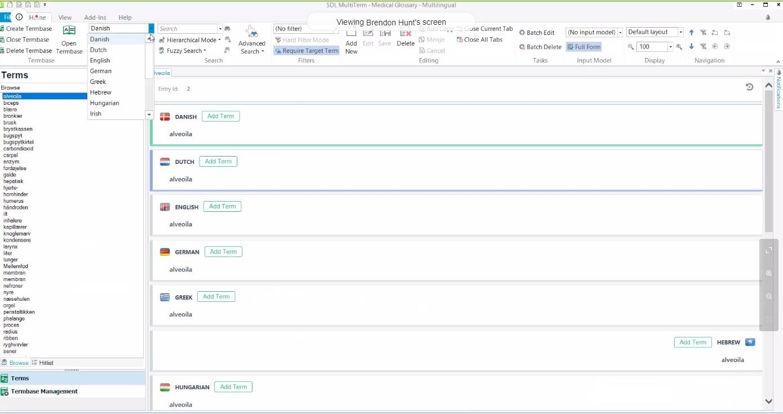 SDL Multiterm screenshot