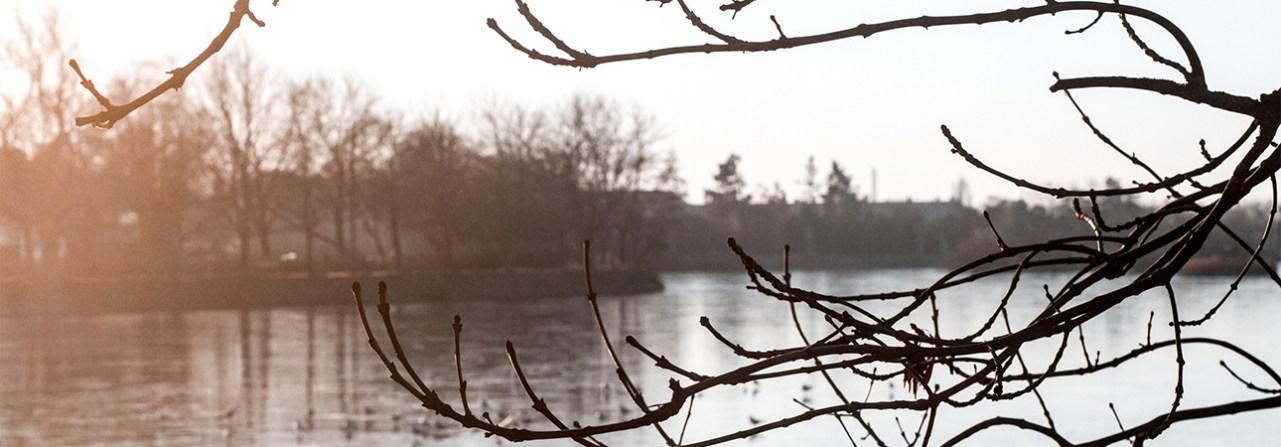 Nina Marquardsen Fotografi - Damhussøen-Det skal ammes væk - Amning