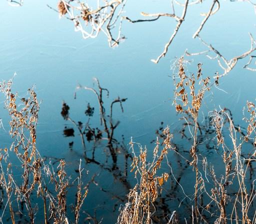 Nina Marquardsen Fotografi - fotobog