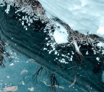Nina Marquardsen Sågbäcken iskrystaller og sne