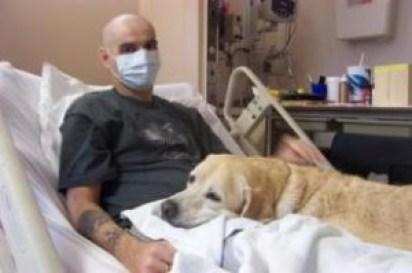 cane-ospedale