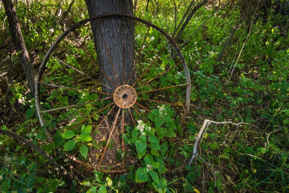 The Old Hay Machine Wheel