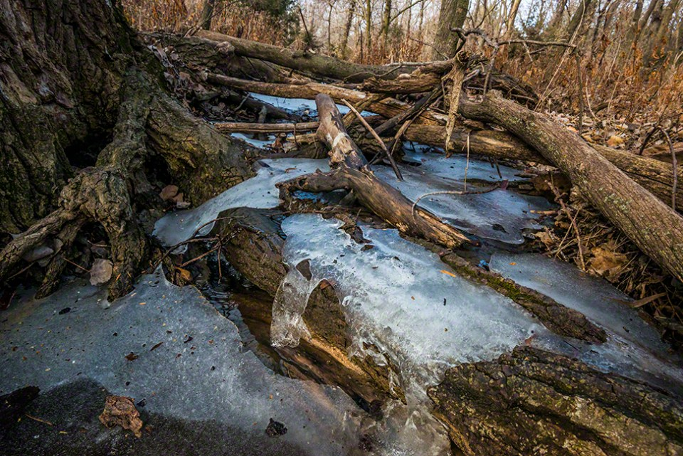 The Ice at Grandmother Cottonwood - MS
