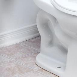 bad feng shui toilet