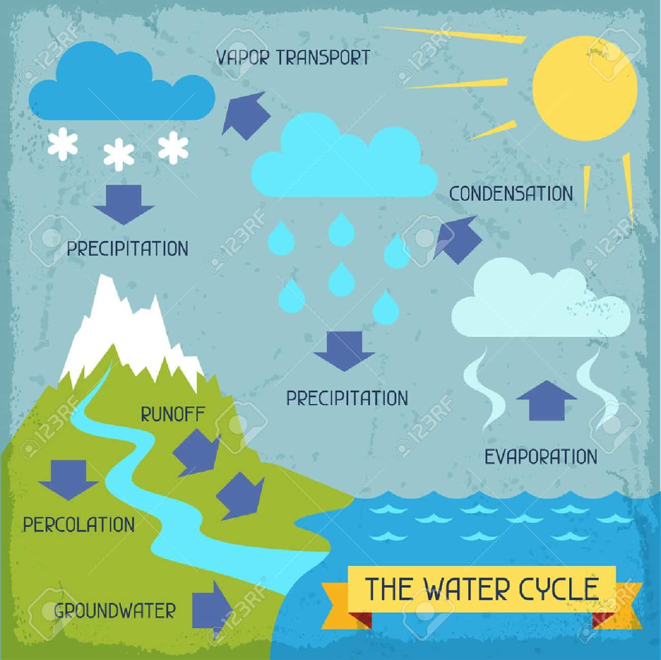 The Water Cycle Poster With Nature Infographics