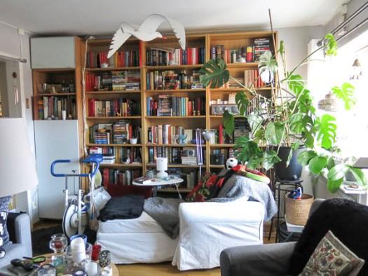 bokhylla, böcker, books, book-cases