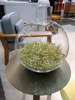 glassbowl