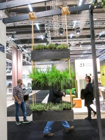hanging_plants