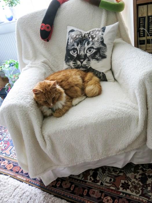 chair, gustav, livingroom
