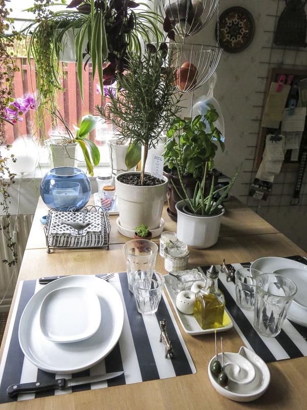plantytablesetting
