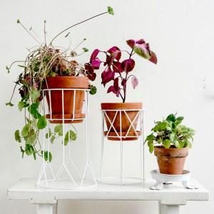 plantstands