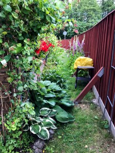 The passage from the backgarden to the frontgarden