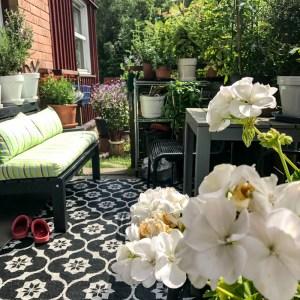 patio, garden