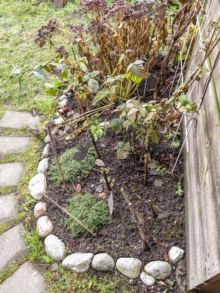 flowerbed