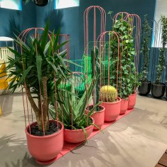 Outdoor plantstands.