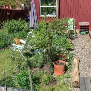 springtime, garden