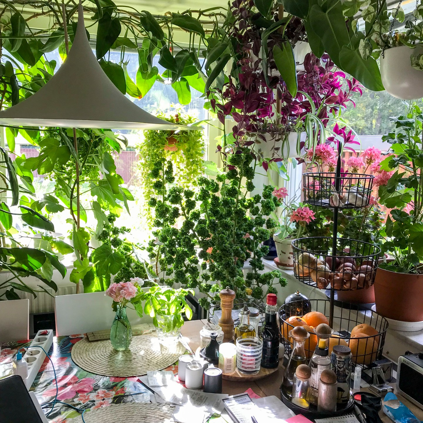 kitchenjungle