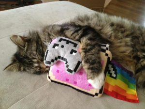 nyan-cat-toy